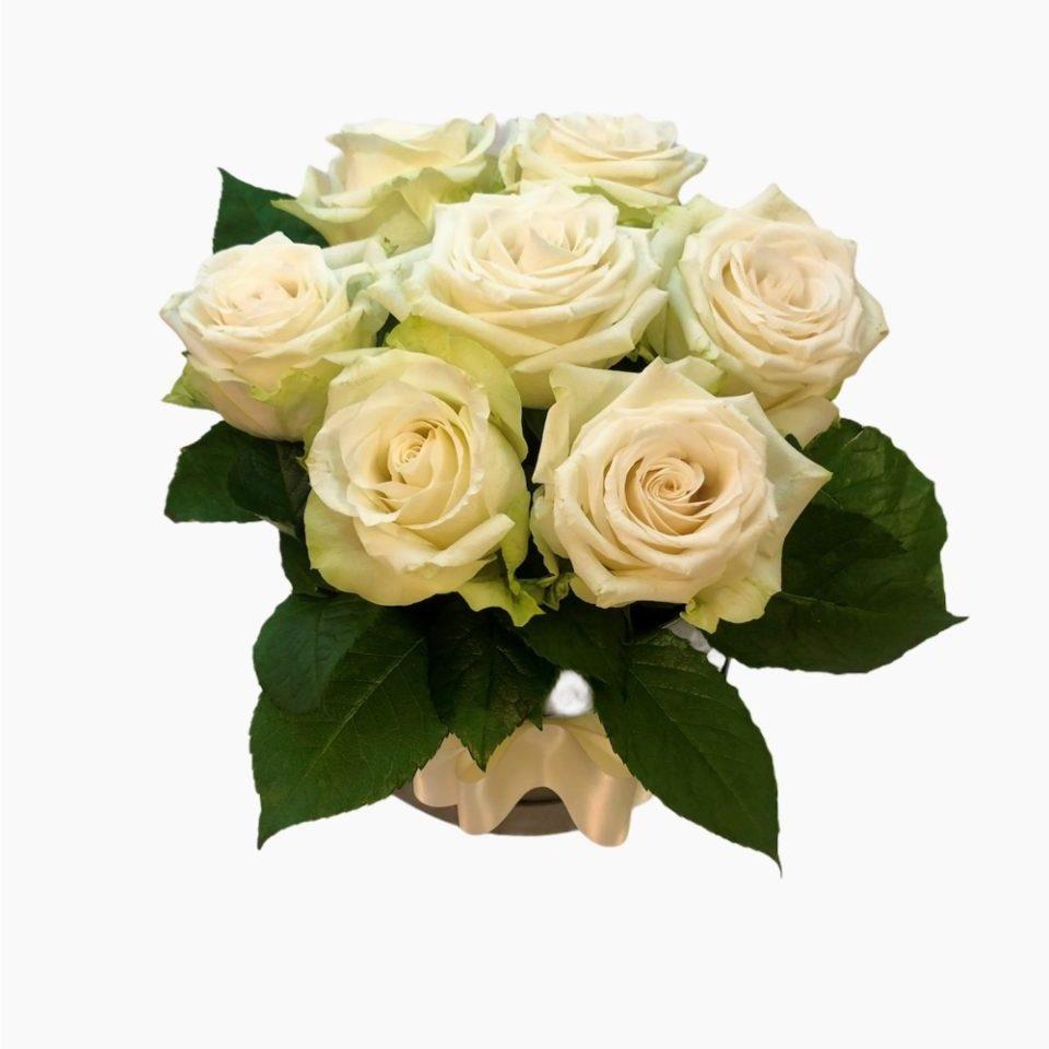 Flower box beli