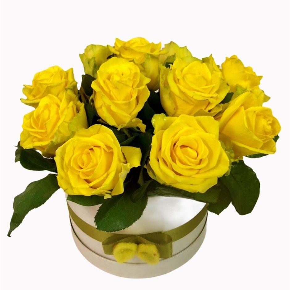 Flower box rumena 1